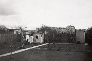 Photo from Museum Victoria. A typical backyard for the 50s and 60s, a fowl house, outside lavatory and a clothes line.