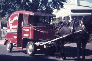 "Nanette Mazey shared a photo and a memory of growing up in Adelaide while bread delivery was still by horse and cart; ""This was take in the early 70's in Alpha Road, Prospect. I can't remember how often they used to come around."" Great photo Nanette, thank you!"