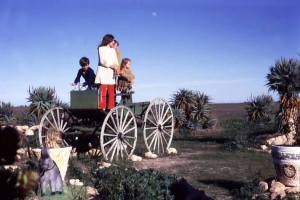 Photo courtesy Diana Field. You knew you were getting close to Adelaide when you passed the Arizona Cactus Ranch on Port Wakefield Road.
