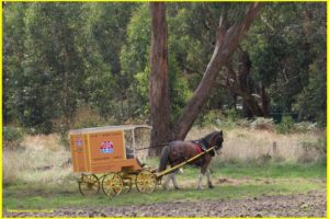 Bread delivery by horse and cart. We are the last generation to witness horse and cart deliveries